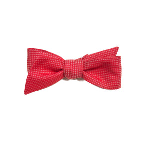 The Spice Up  Bow Tie