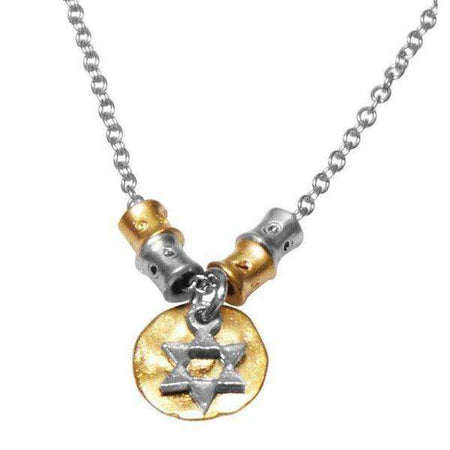 Silver on Gold Medallion Star of David Necklace-Israel-Cart