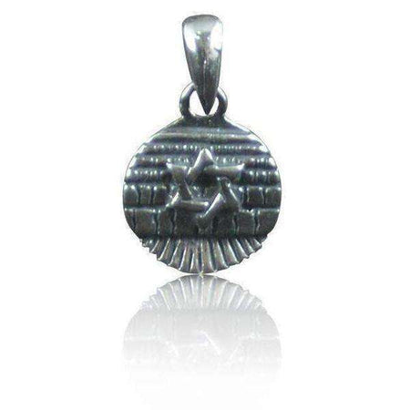 Silver Star of David Necklace on a West Wall Medallion-Israel-Cart