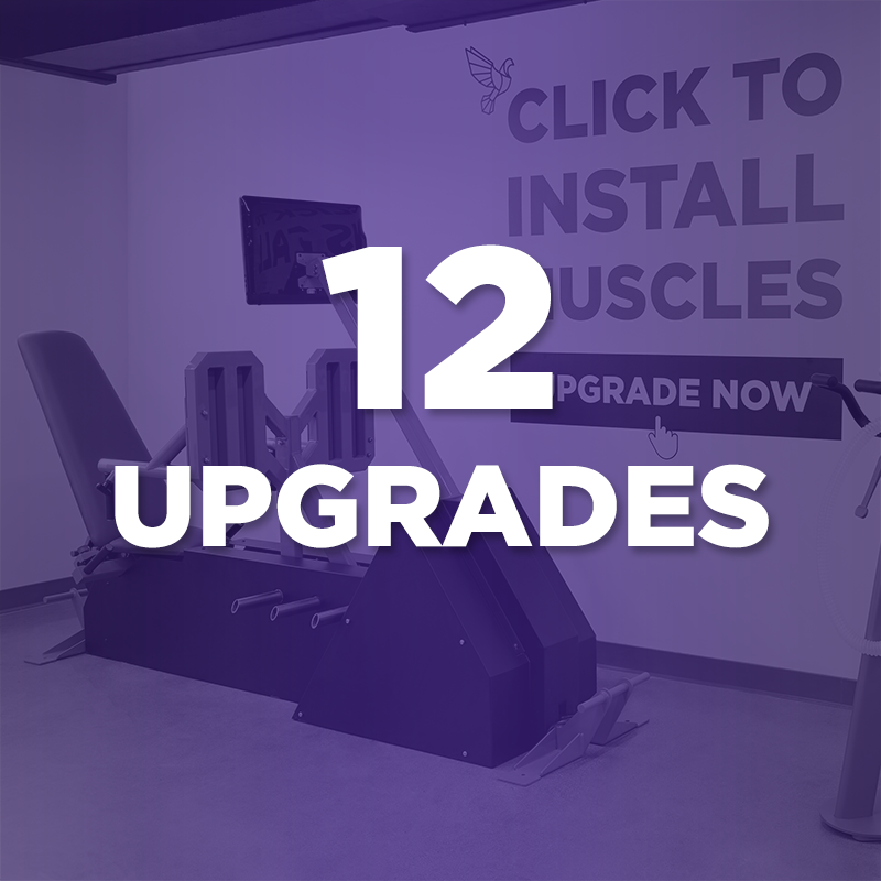 12 Upgrade Package (Santa Monica Only)
