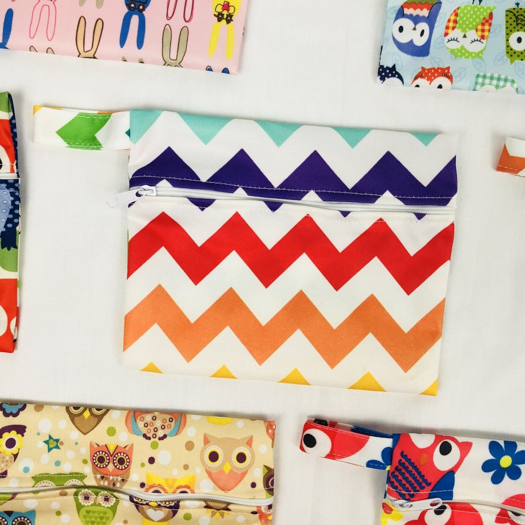 Mini Wetbag - Colourful Chevron