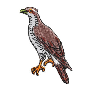 Embroidery patch ''Goshawk''