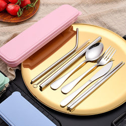 Reusable Stainless Steel Utensils Set with Case