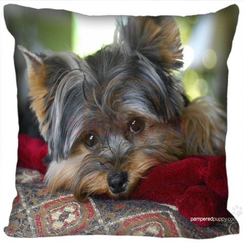 Yorkie Pillows