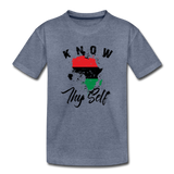 Know Thy Self Toddler Premium T-Shirt - heather blue