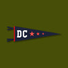 Washington DC Pennant