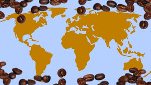 The best coffee around the world