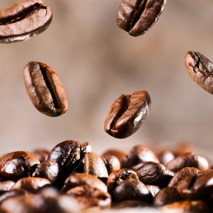 What Are Robusta Beans?
