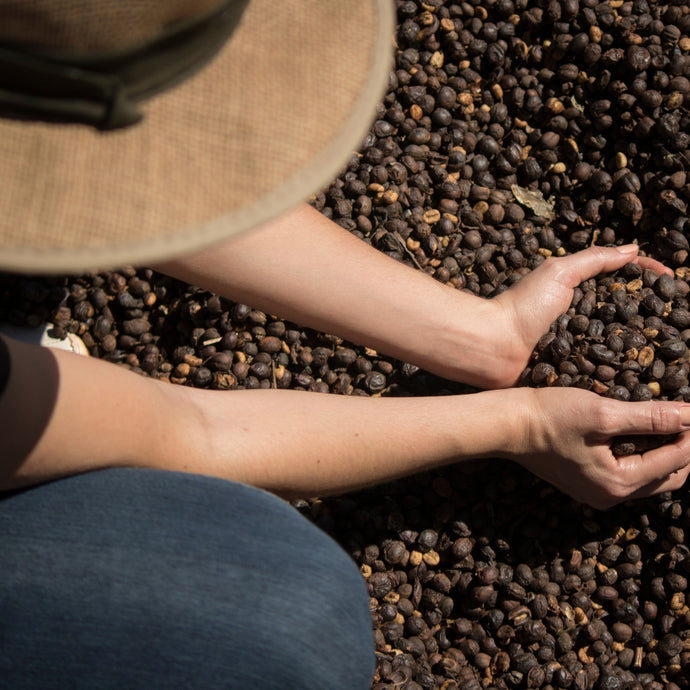 What is Fair Trade Coffee?