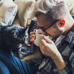 should your cat drink instant coffee
