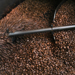 Reviews of the World's Best Coffees