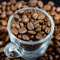 what is the difference between arabica and robusta beans