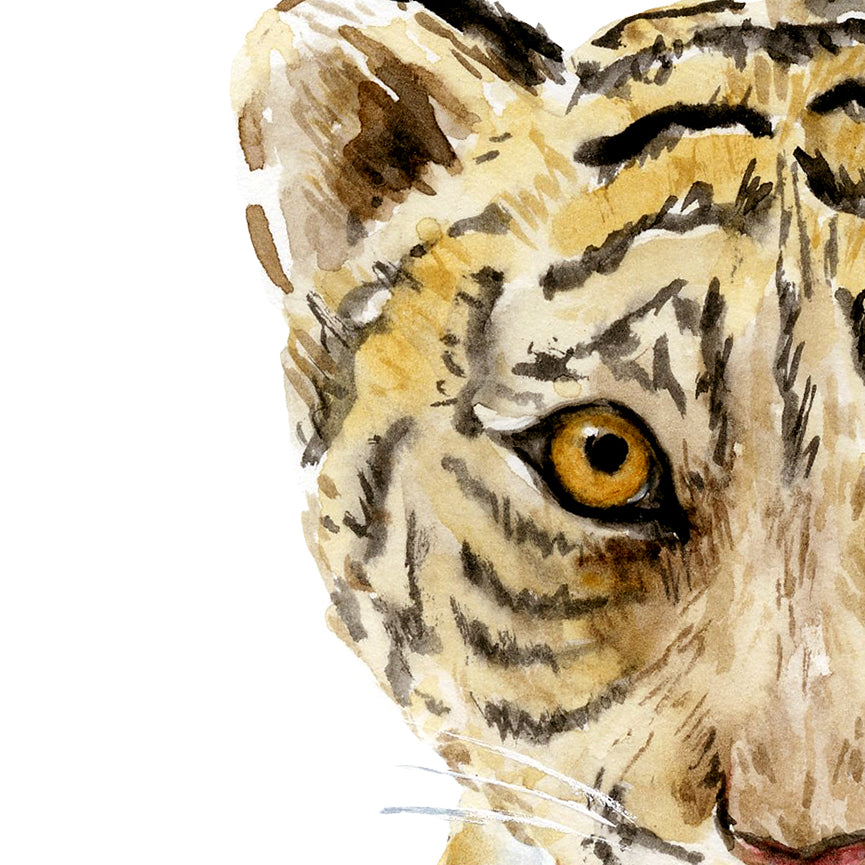 watercolor tiger cub, baby tiger, watercolor illustration, detailed wildlife, nursery print