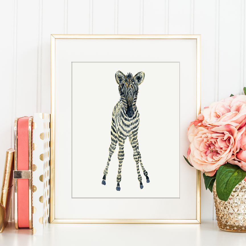 watercolor baby zebra, zebra foal illustration, detailed print