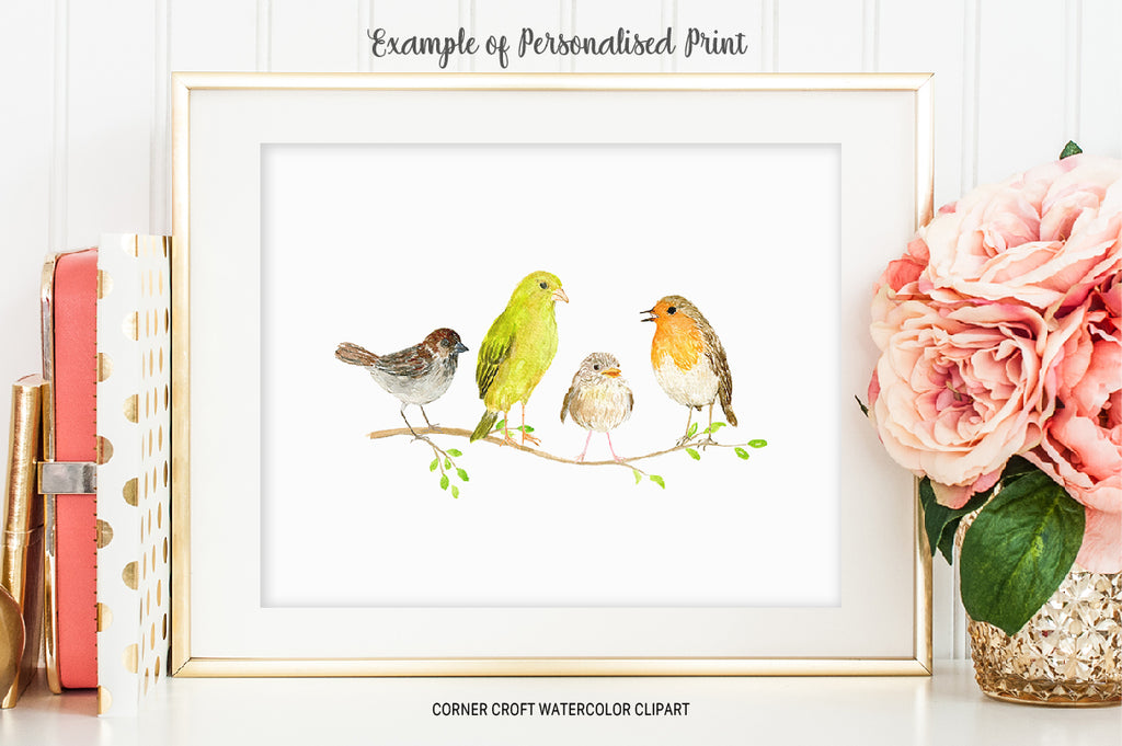 watercolor bird illustration sparrow, greenfinch, chick and robin