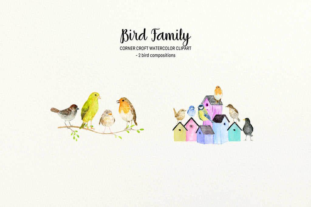 Watercolor bird family, birds on tree branch, birds on bird nest