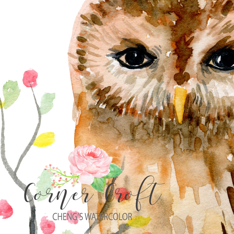 watercolor bird illustration, watercolor print, digital download, owl print