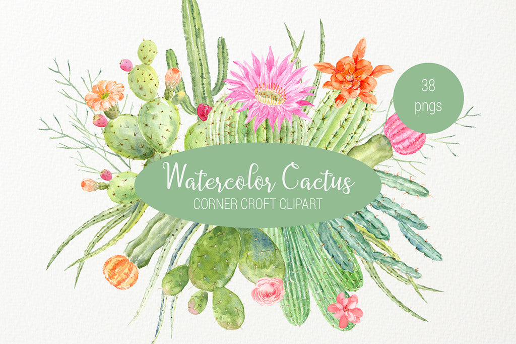 watercolor cactus clipart, detailed botanical illustration, instant download