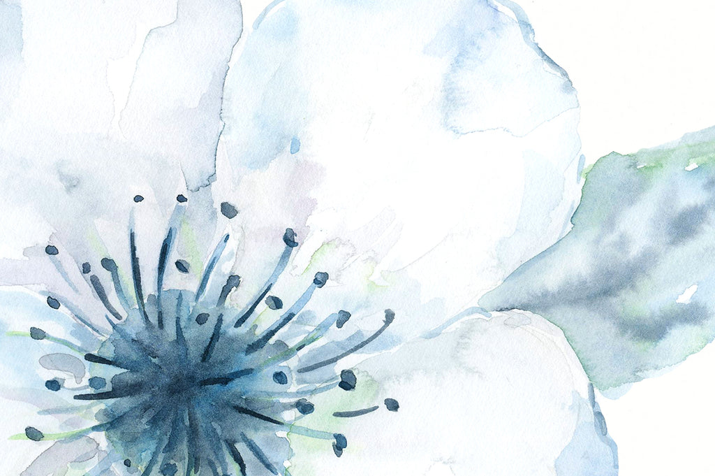 Watercolor white cherry blossoms, watercolour flower, white flower, print, digital download