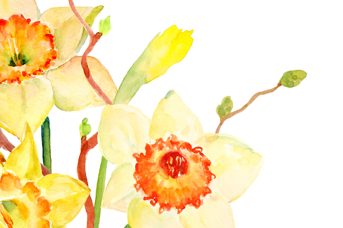Watercolor spring flower daffodils floral arrangement printable watercolor spring flower daffodils floral arrangement printable corner croft mightylinksfo