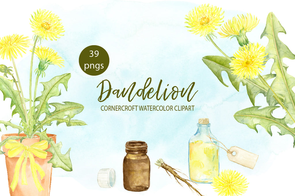 watercolor clipart, dandelion clipart, dandelion flower, nature illustration