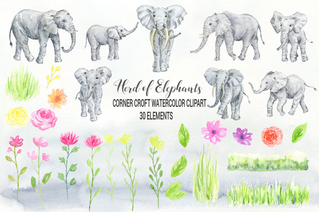 animal clipart, elephant clipart, watercolor illustration of elephants, elephant family