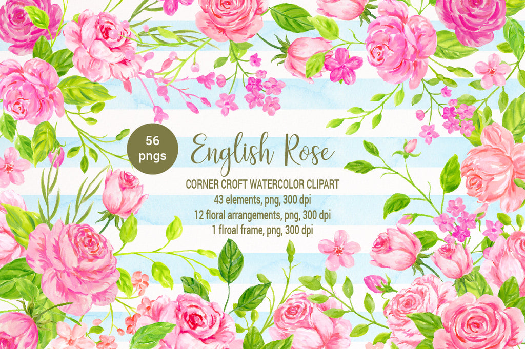 watercolor clipart English rose, romantic cottage rose, floral compositions instant download