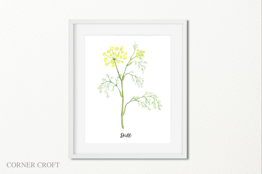 watercolor illustration herb dill, fennel with yellow flowers, printable, herb instant download