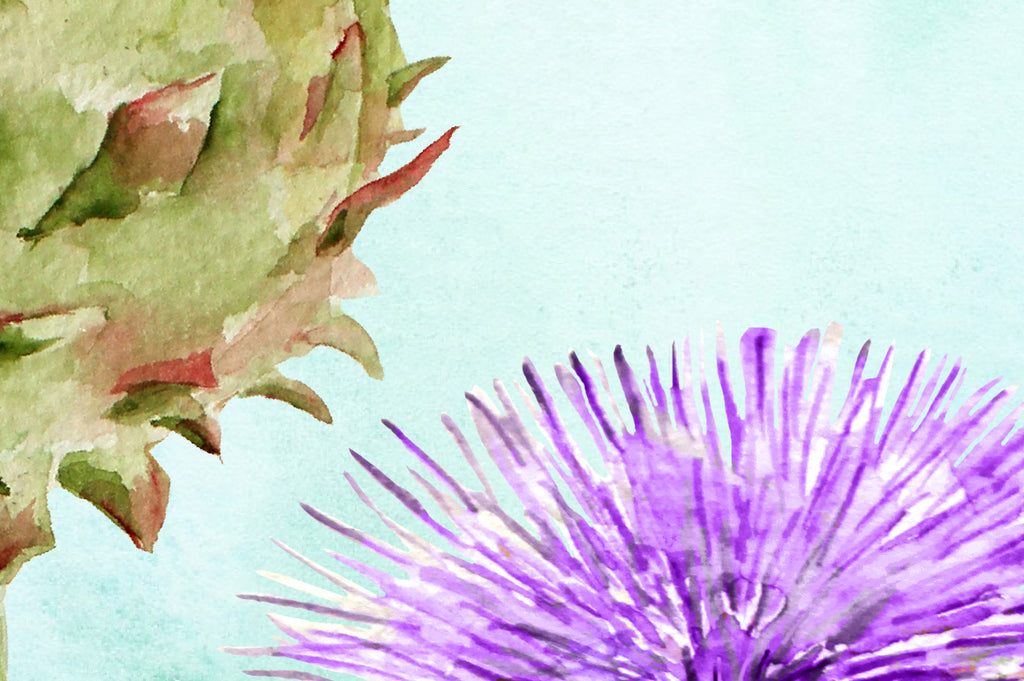 watercolor art print globe artichoke, purple flower head, vegetable print