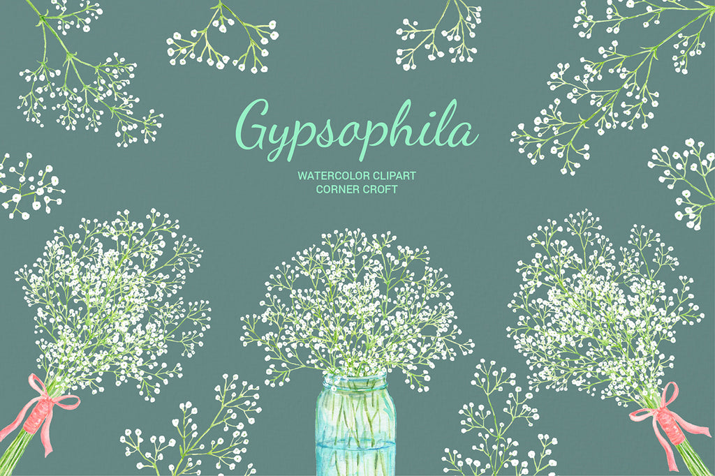 Watercolor gypsophila, baby's breath, mason jar flowers, gypsophila bouquet for instant download