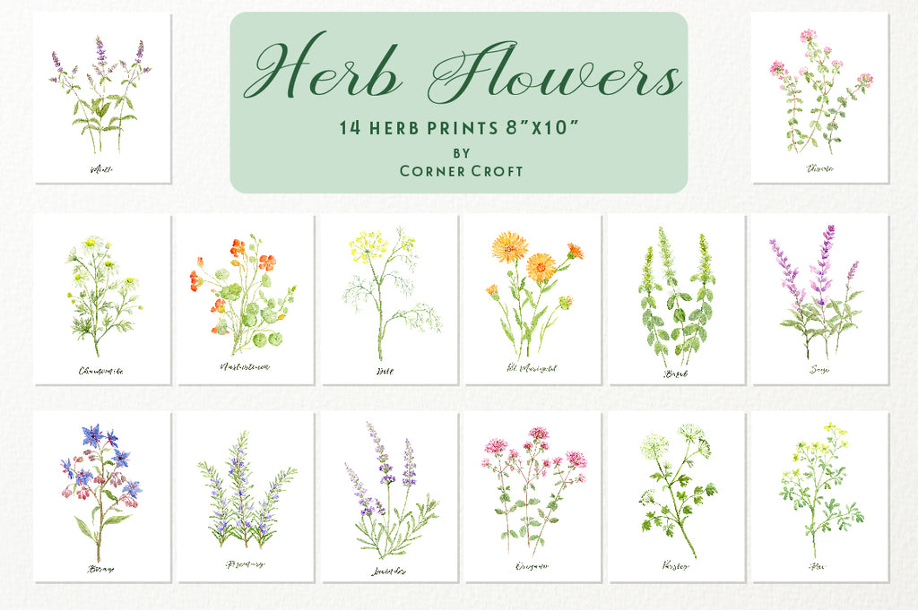 herb prints, watercolor herb print, instant download