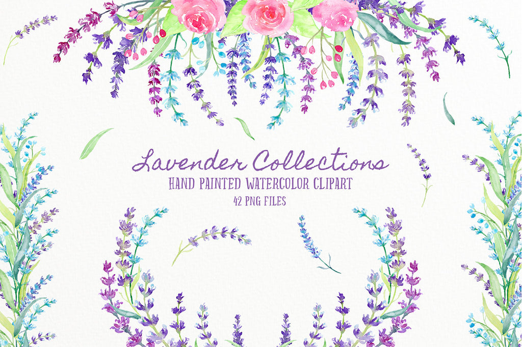 watercolor lavender collection. pink, purple lavenders and pink roses