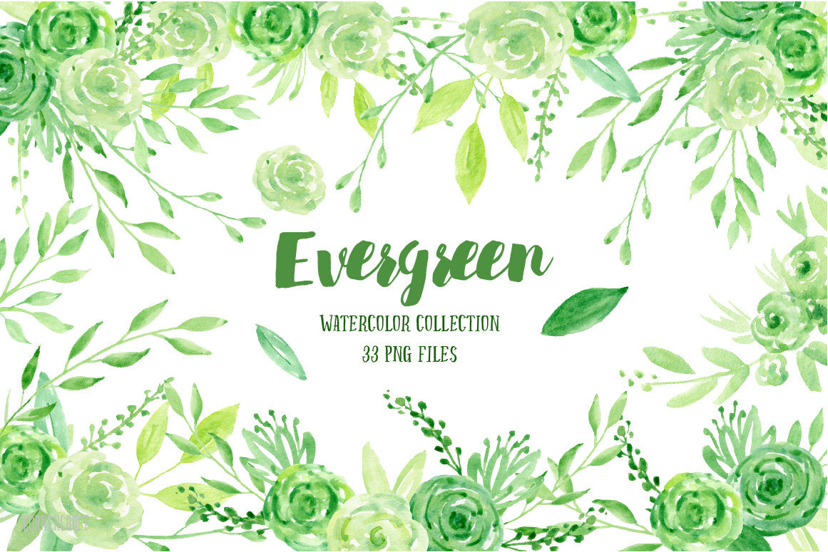 Watercolor clipart Evergreen, green leaves, green flowers ...