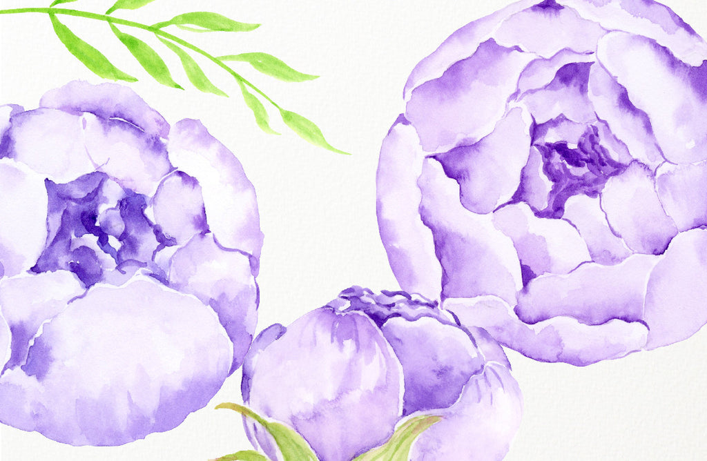 Watercolor lilac peony, purple peony, peony bouquet and floral elements for instant download
