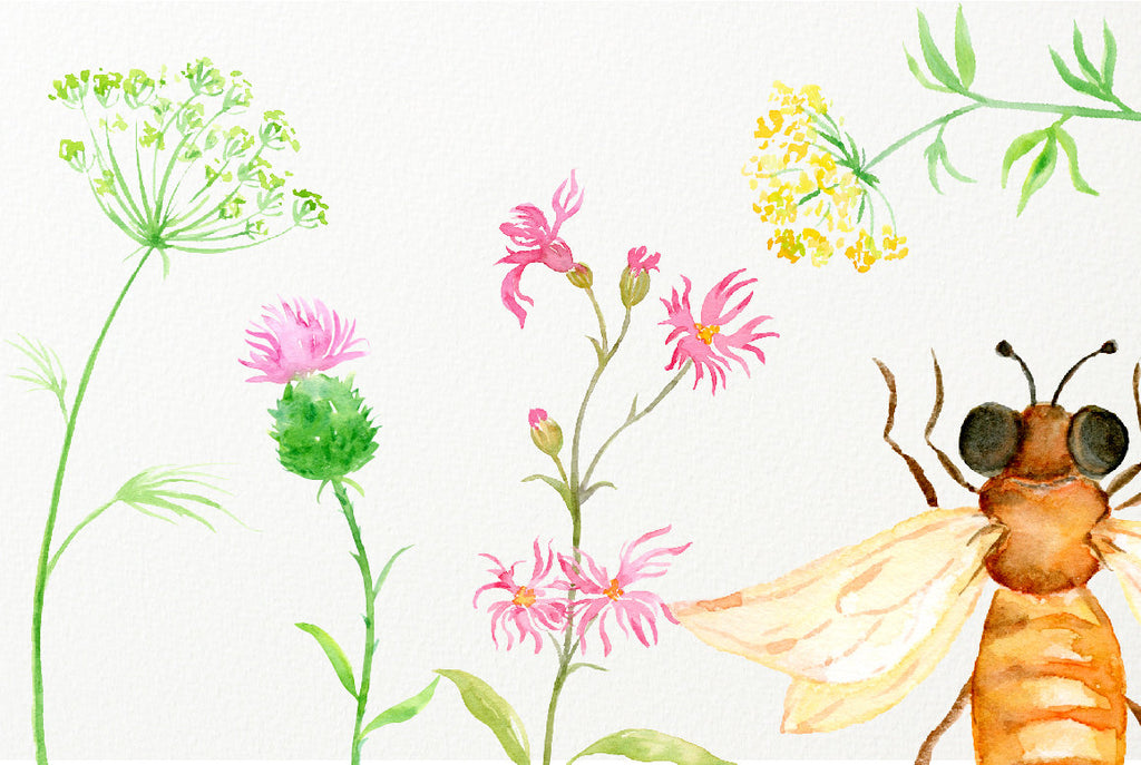 watercolor meadow flowers, pink, yellow and blue flowers.