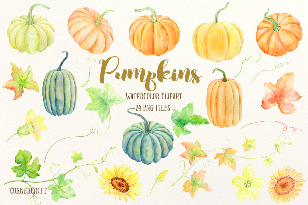 watercolor pumpkin clipart, pumpkin illustration, thanksgiving clipart