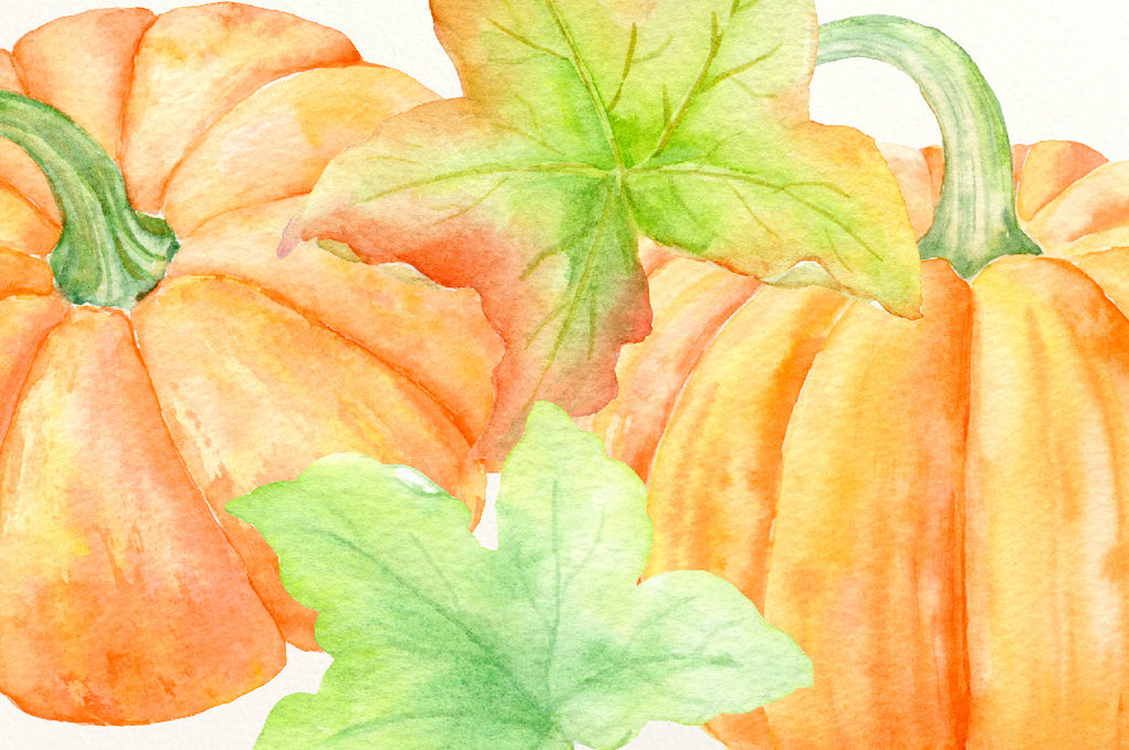 watercolor pumpkin illustration, digital download