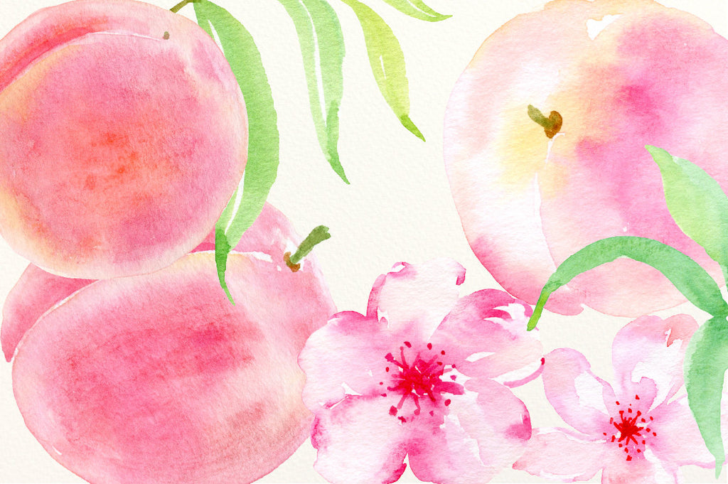 clipart fresh peaches, pink flowers, peach flowers and leaves, peach patterns for instant download