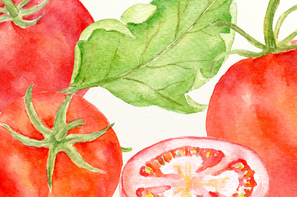 Watercolor red tomatoes, red tomatoes, tomato slices, tomato wedges, leaves, flowers and watercolor texture for instant download