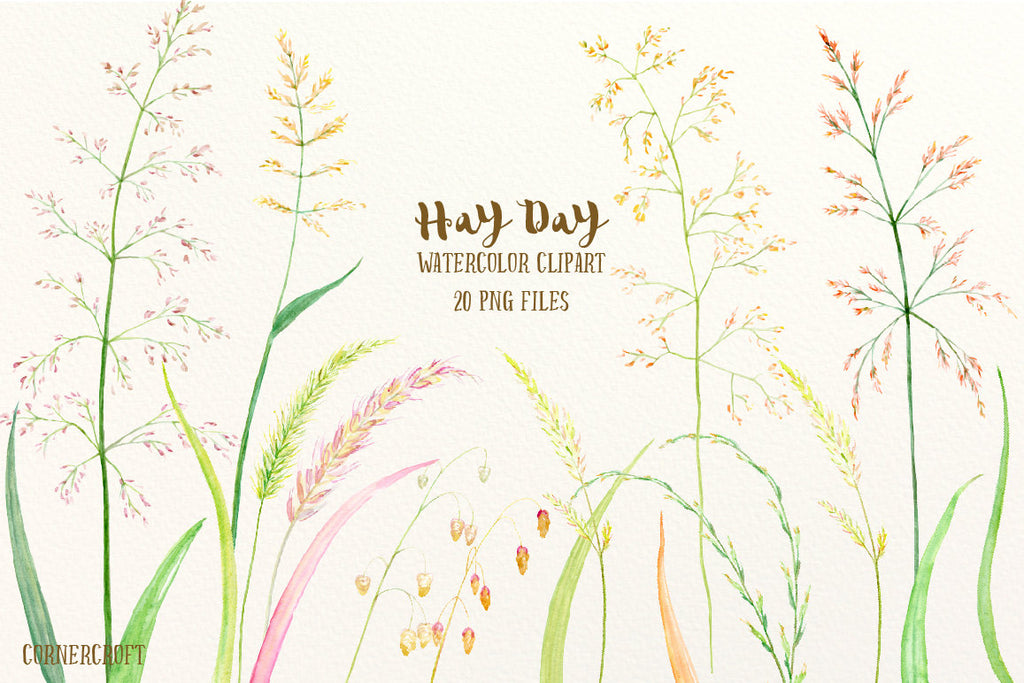 Watercolor clipart Hay Day, grass seed heads, ornamental grass