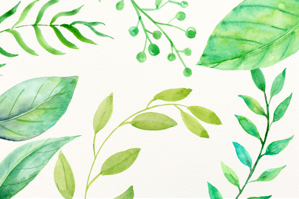 watercolor clipart green leaf, branch, and berry, instant download