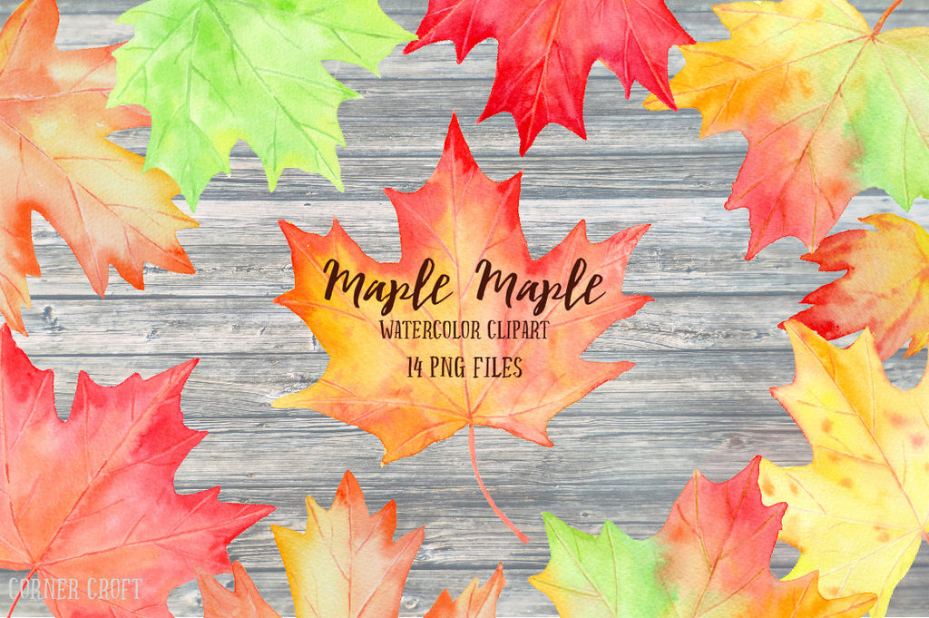 watercolor leaf illustration, instant download, autumn leaf, maple leaf
