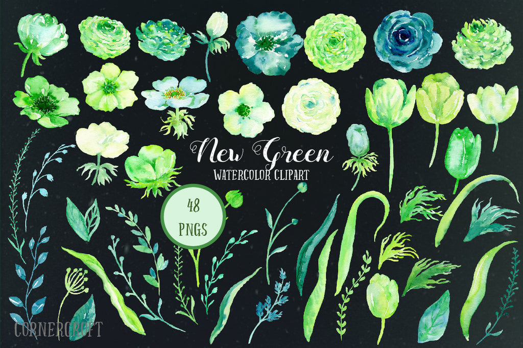 Watercolor Collection New Green, roses, ranunculus, tulips, spring flowers