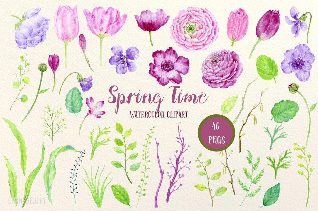Watercolor Collection Spring Time, pink and purple ranunculus, tulips, violets, crocuses and spring flowers for instant download