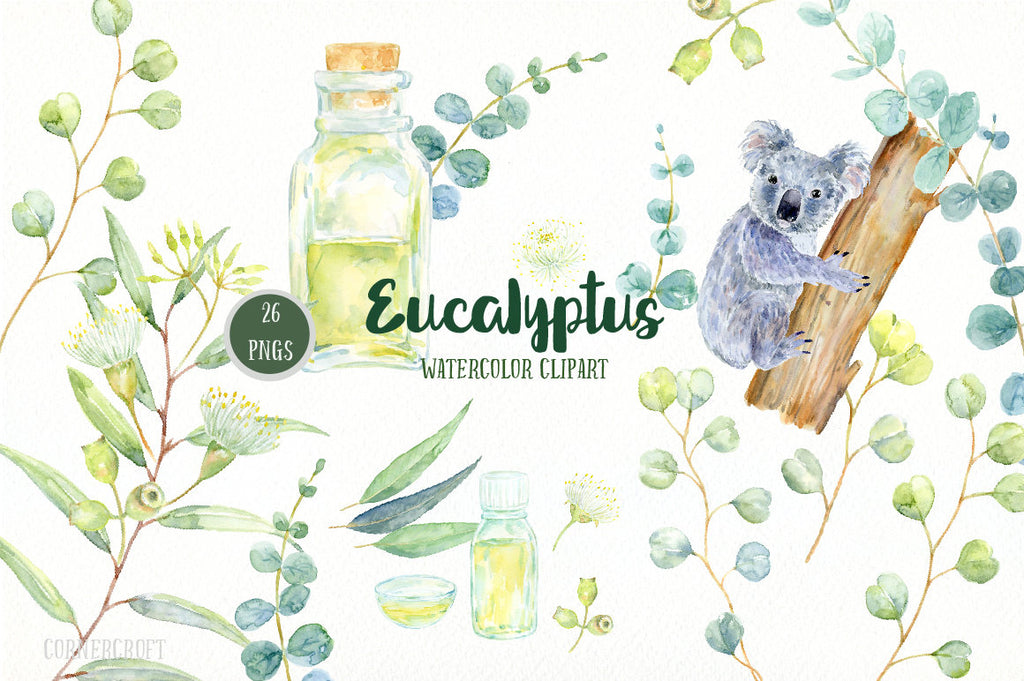 Hand painted eucalyptus watercolor leaves, flowers, oil bottles, koala and decorative leaves for instant download
