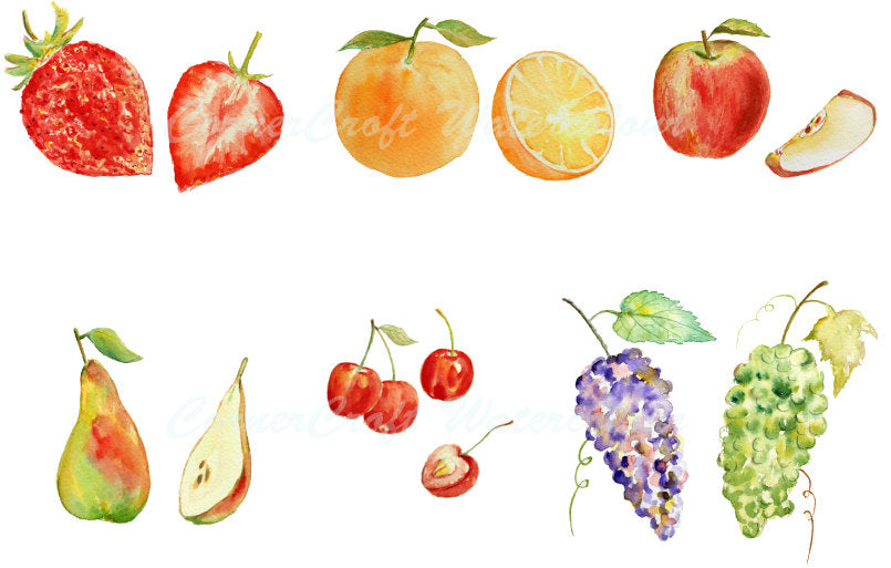 watercolor fruit, fruit illustration, grapes, apple, strawberries, pear, cherry