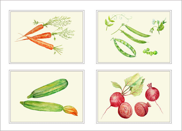 watercolor vegetable clipart, carrot, courgette, garden peas, beetroot instant download