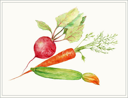 watercolor clipart of veg, carrot, garden peas, courgette and beet root, instant download