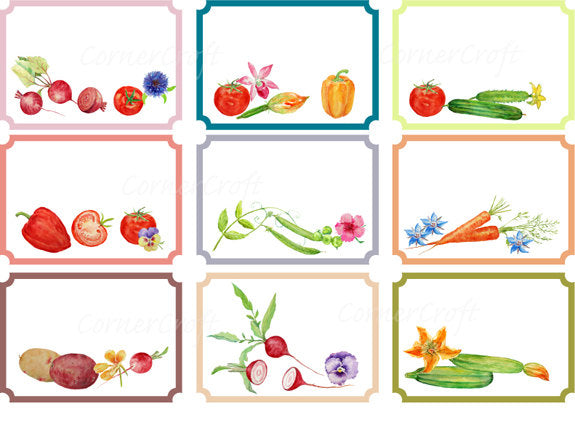 watercolor vegetable label, gift tag, watercolor illustration