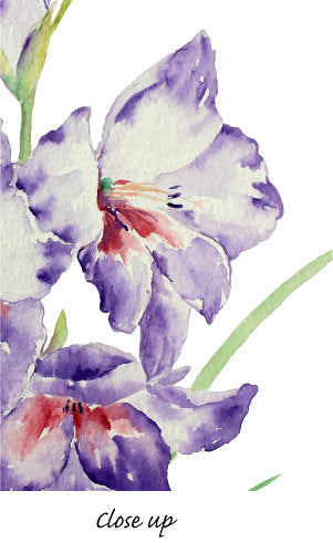 gladiolus clipart, pink, yellow, white, purple flowers